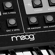 Moog Synth